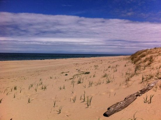 Race Point Beach: Beach looking east