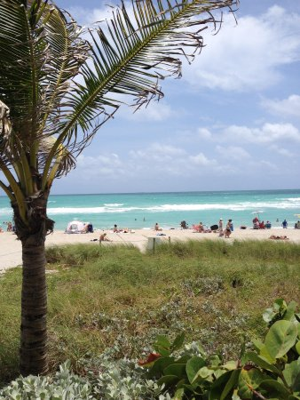 DoubleTree Resort by Hilton Hollywood Beach: Hallanda beach, just 30 meter to hotel