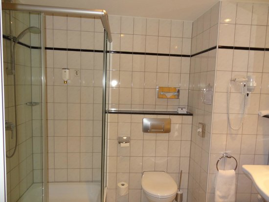Best Western Plus Palatin Kongresshotel : shower inside the bathroom