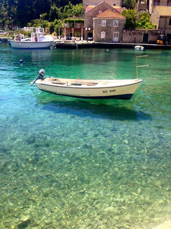 Hotel Bozica: Clear waters in the harbour