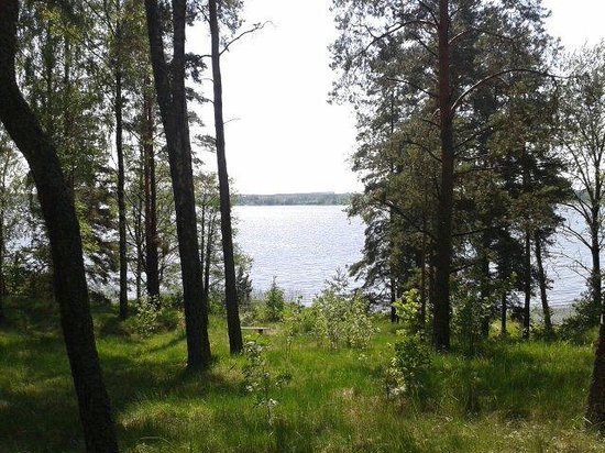 Latvian Ethnographic Open Air Museum : Lake