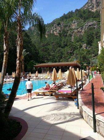 Julian Forest Suites: Pool side