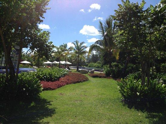 Sofitel So Mauritius: les jardins près de la piscine