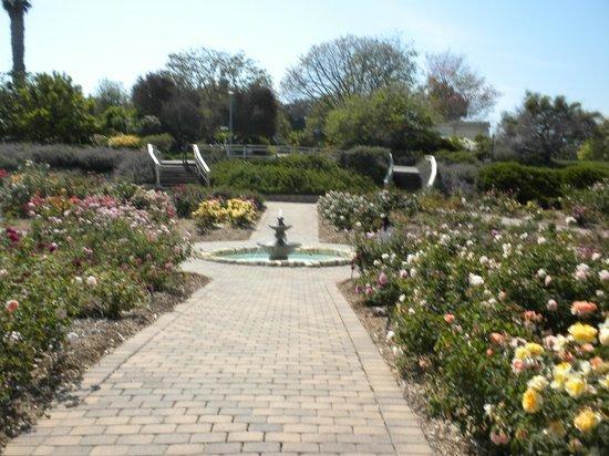 South Coast Botanic Garden: Fountain
