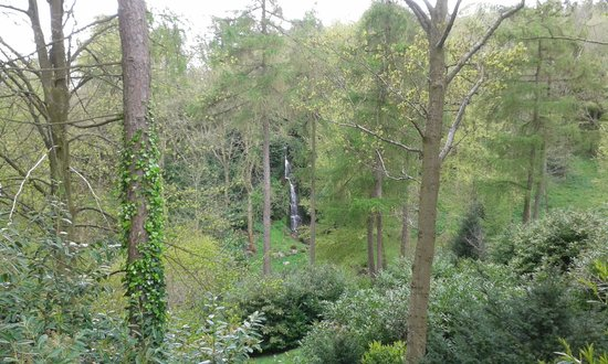 Hestercombe Gardens: A view of the stunning waterfall