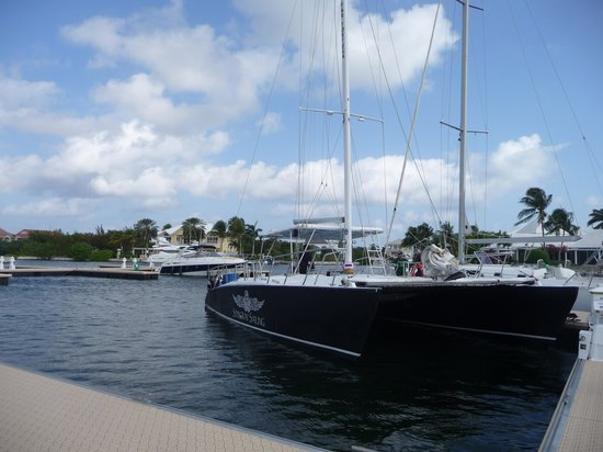 Stingray Sailing: el catamarán
