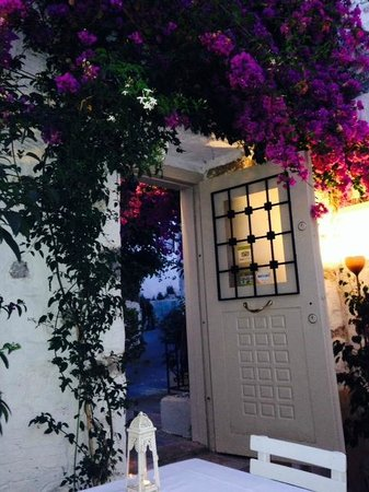 Evimiz: terrasse fleurie