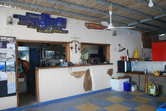 Papalagi Taverna : locale
