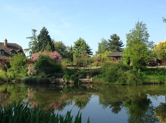 Lakeside Town Farm: TUCKED AWAY FROM OUR HOUSE