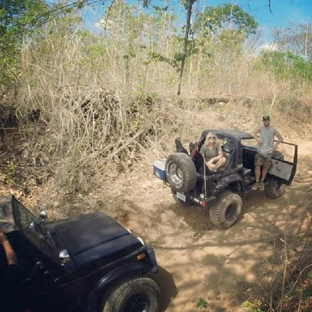 Costa Rican Tours and Services: so fun!