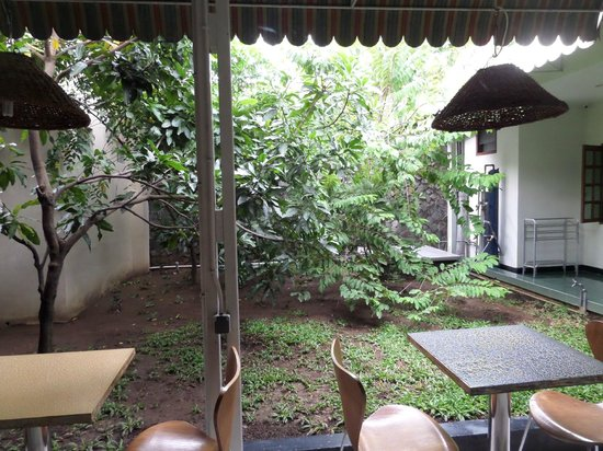 Krowi Inn: garden