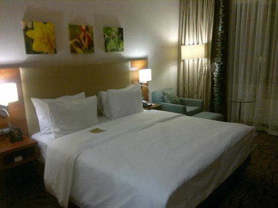 Hilton Garden Inn Astana : вид номера