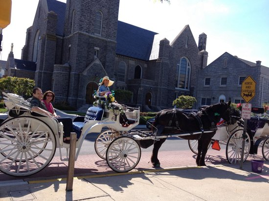Cape May Carriage Company : Beautiful day for a carriage ride.