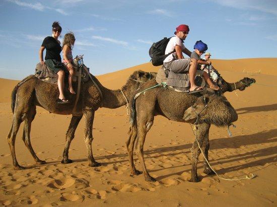 Chez les Habitants: balades dans les dunes