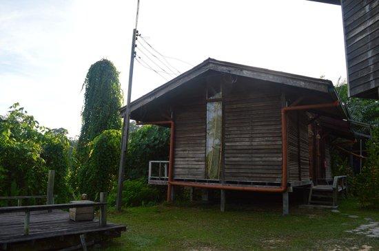 Paganakan Dii Tropical Retreat : Cabin