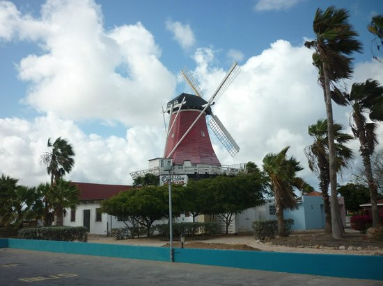The Mill Resort & Suites Aruba: Vista saliendo del hotel