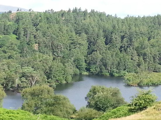 Tarn Hows: Taken from the top