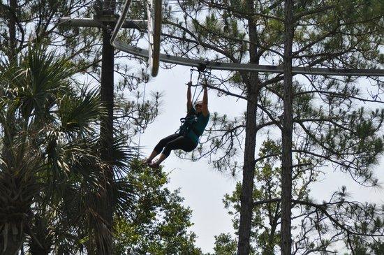 Forever Florida: zip coaster
