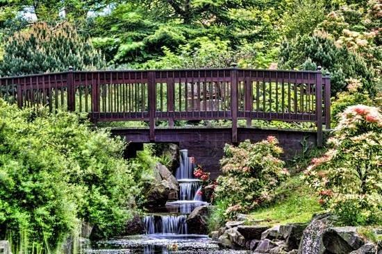 Lauriston Castle: japanese garden