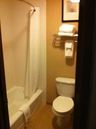 Yellowstone West Gate Hotel: Bathroom