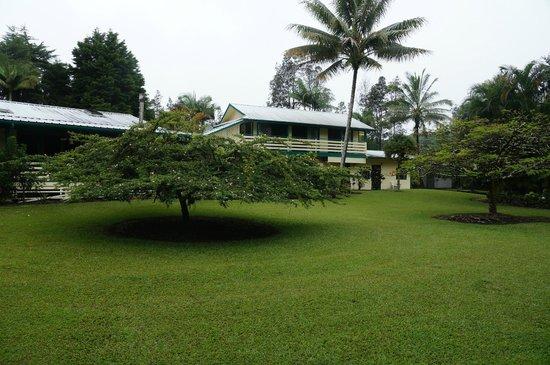 Hale Moana Bed & Breakfast : Tropischer Garten mit Appartments