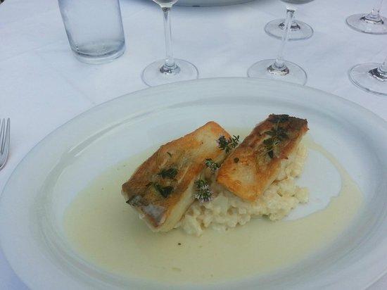 Heinzle: Seared Perch Fillet With White Rissoto