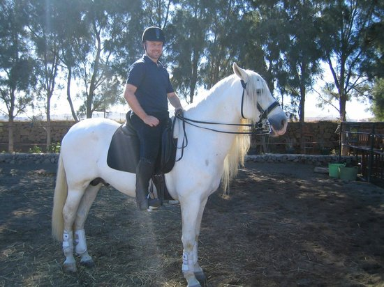 Centro Hípico Los Pinos Verdes: relaxing after the dressage lesson