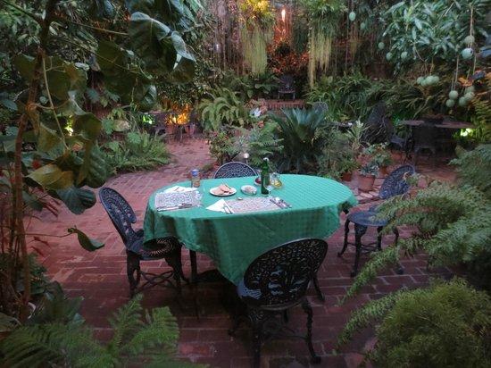 Hostal Casa Colonial el Patio: por cenar