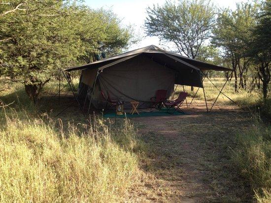 Serengeti Wilderness Camp: Vista de la tienda de campaña