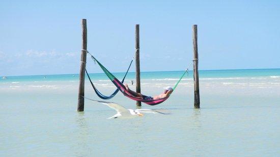 Villas HM Paraiso del Mar : la mer