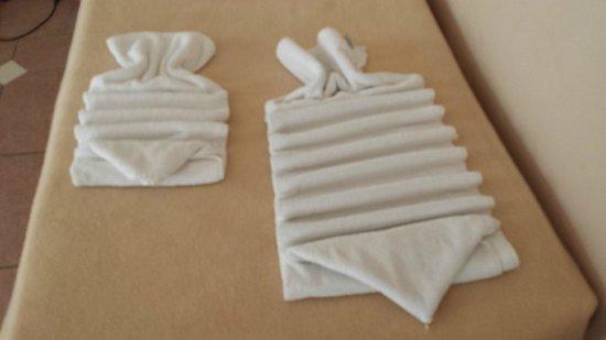 Sol Y Mar Ivory Suites: towel art