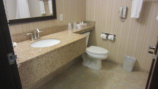 Holiday Inn Express Portland - Jantzen Beach : Clean bathroom