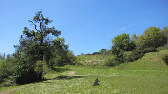 San Miguel de Lillo: Aspecto del verde entorno