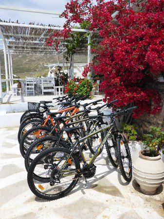 Yummy Pedals - Mykonos BicycleTours