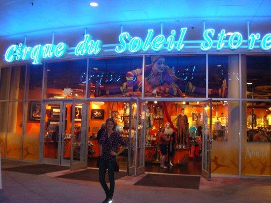 La Nouba - Cirque du Soleil: Cirque du Soleil