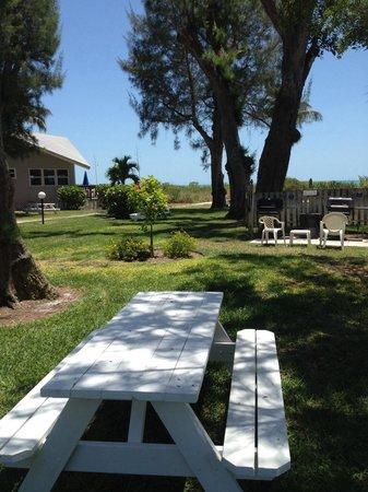Caribe Beach Resort: Great shade