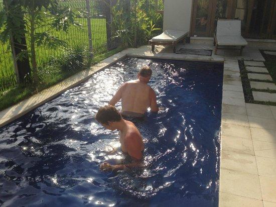 Bali Alke Villas: Avoiding the live crabs in the swimming pool