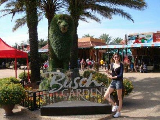Having Fun In The Jeep Picture Of Busch Gardens Tampa Tampa Tripadvisor