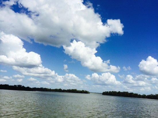 Everglades National Park Boat Tours: Astonishing Everglades Sky