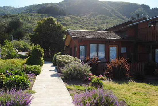 Ragged Point Inn and Resort: los caminos llenos de flores