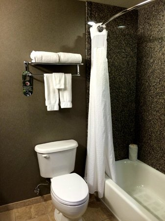 Holiday Inn Ontario Airport: King Bathroom
