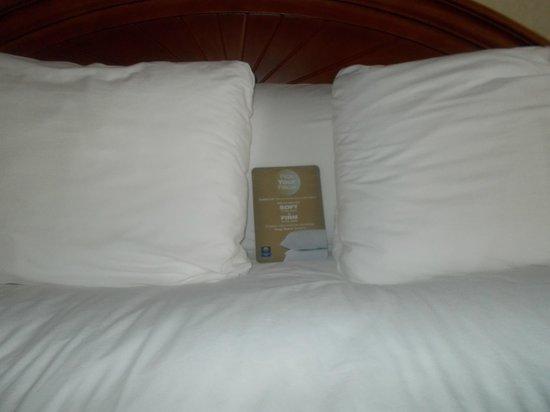Comfort Inn Toronto Northeast: pillows on bed very comfy