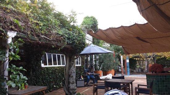 Morris & Jame's Cafe-Bar : guitarist