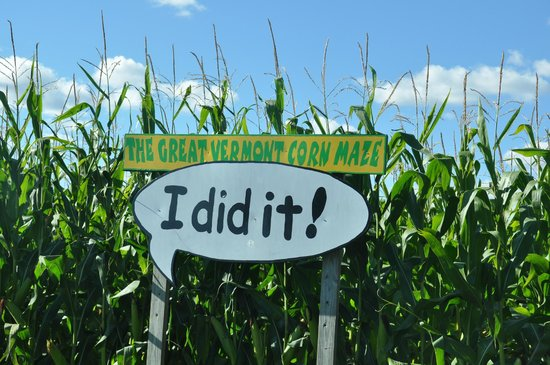Great Vermont Corn Maze: The end of the Maze