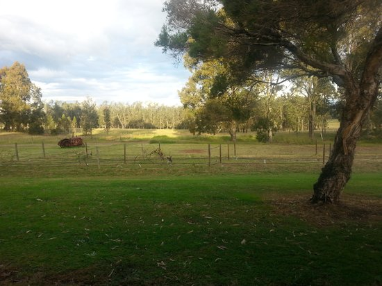 Hunter Valley Resort: View From Room