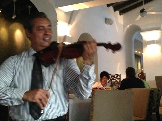Café des Artistes: String serenade with a smile