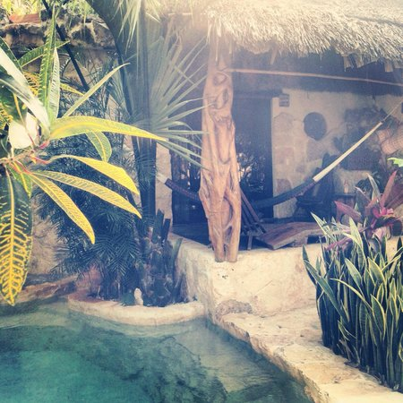 La Selva Mariposa : Our room and pool May 2013
