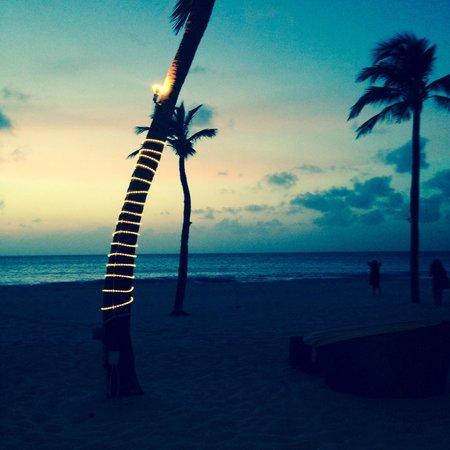 Bucuti & Tara Beach Resort Aruba: Dinner at Sunset