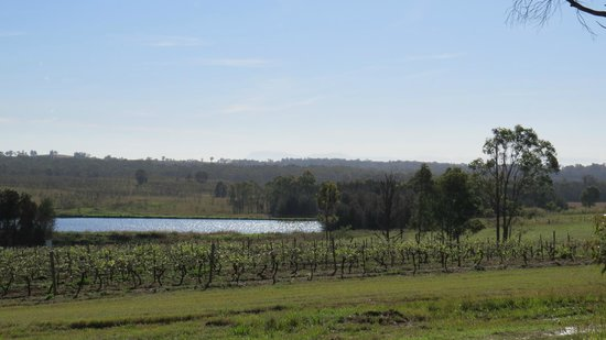 Hunter Valley Resort: view from around the grounds