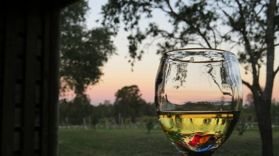 Hunter Valley Resort : sunset